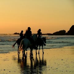 Horses and riders on a beach at sunset.